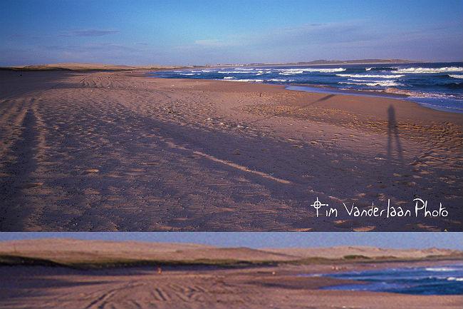 beach 1978 700